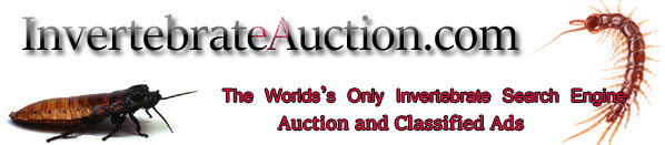 Invertebrate  Ads and Auctions